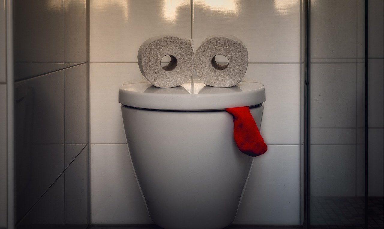 Bouchons toilettes